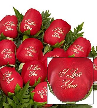 Impression sur rose : I love you