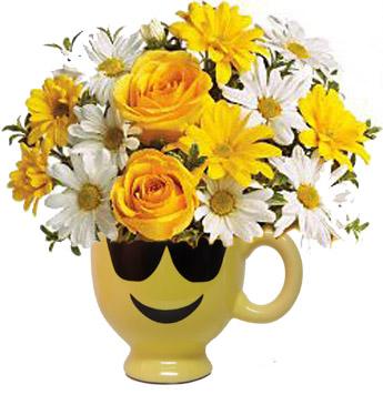 livraison fleurs pas cher arum fleuriste montreal livraison de fleurs montreal centre ville. Black Bedroom Furniture Sets. Home Design Ideas
